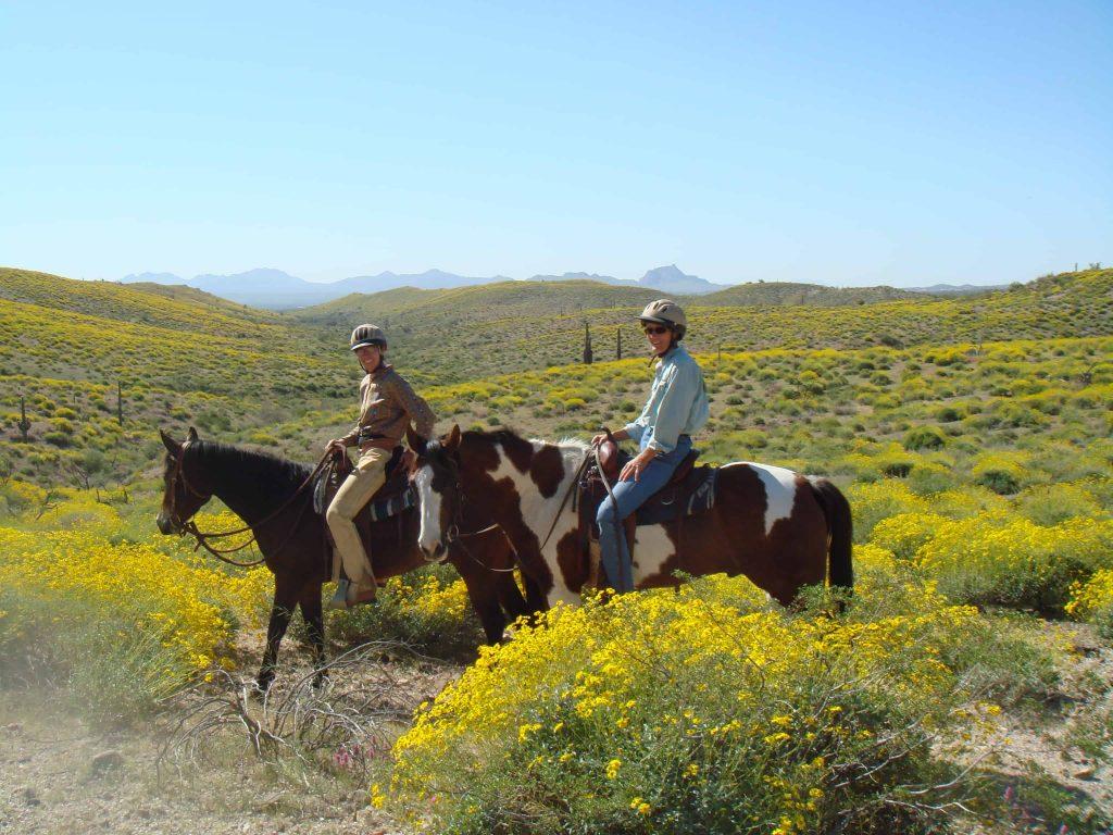 arizona trail ride